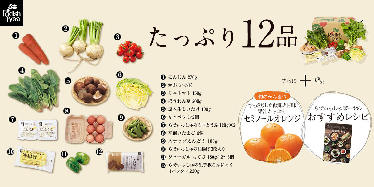 野菜中心の12品が半額の1,980円!らでぃっしゅぼーやのお試しセット